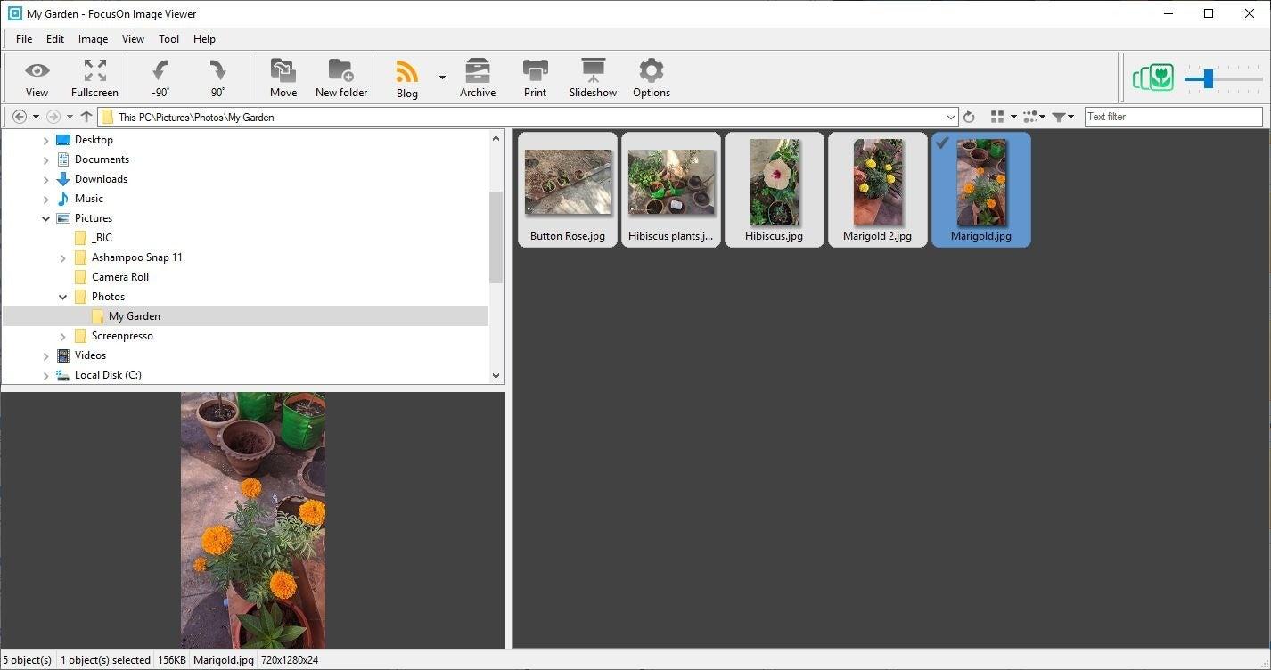 Vista previa del visor de imágenes de FocusOn