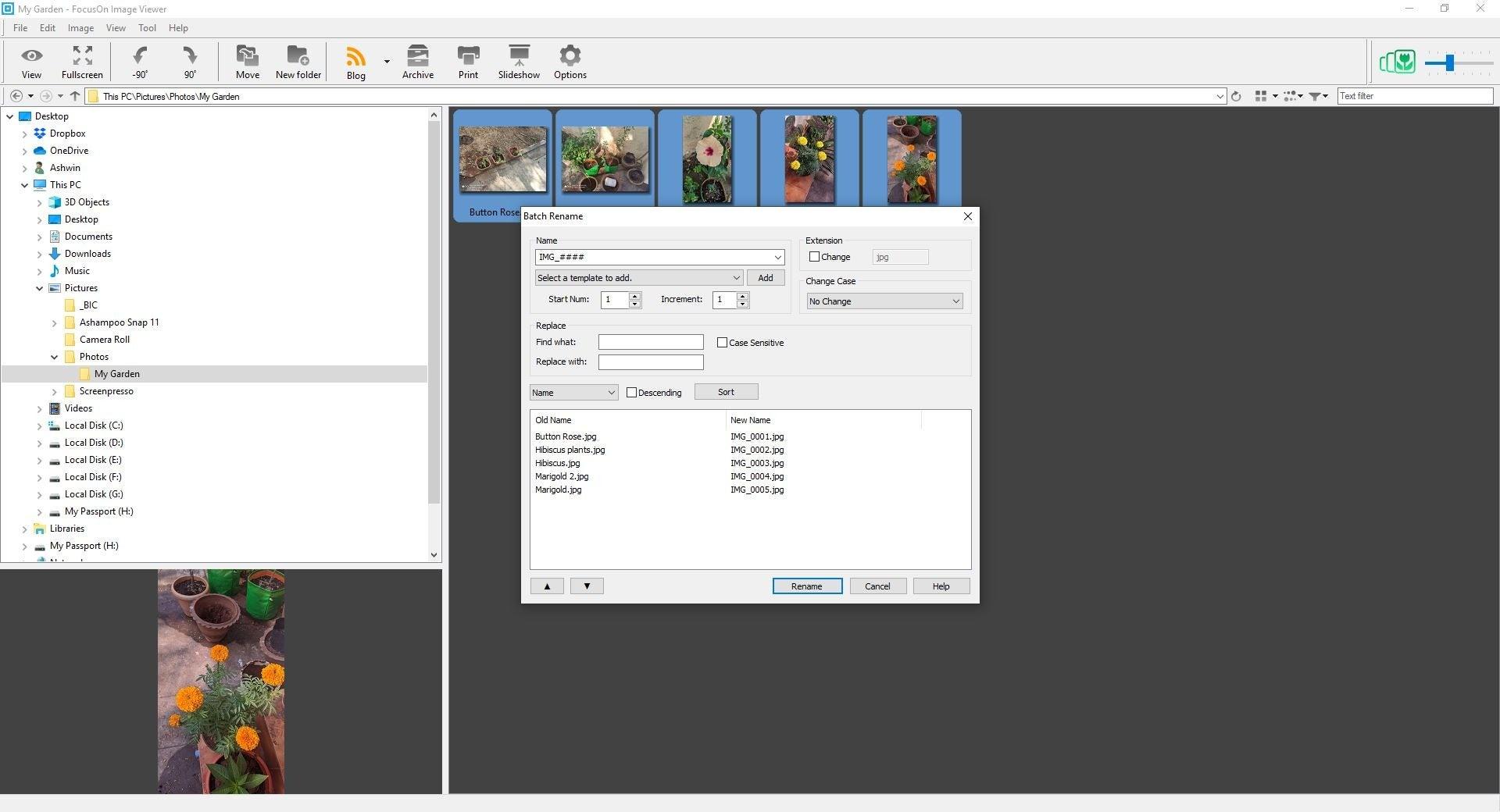 Herramienta de renombramiento de lotes del visor de imágenes FocusOn