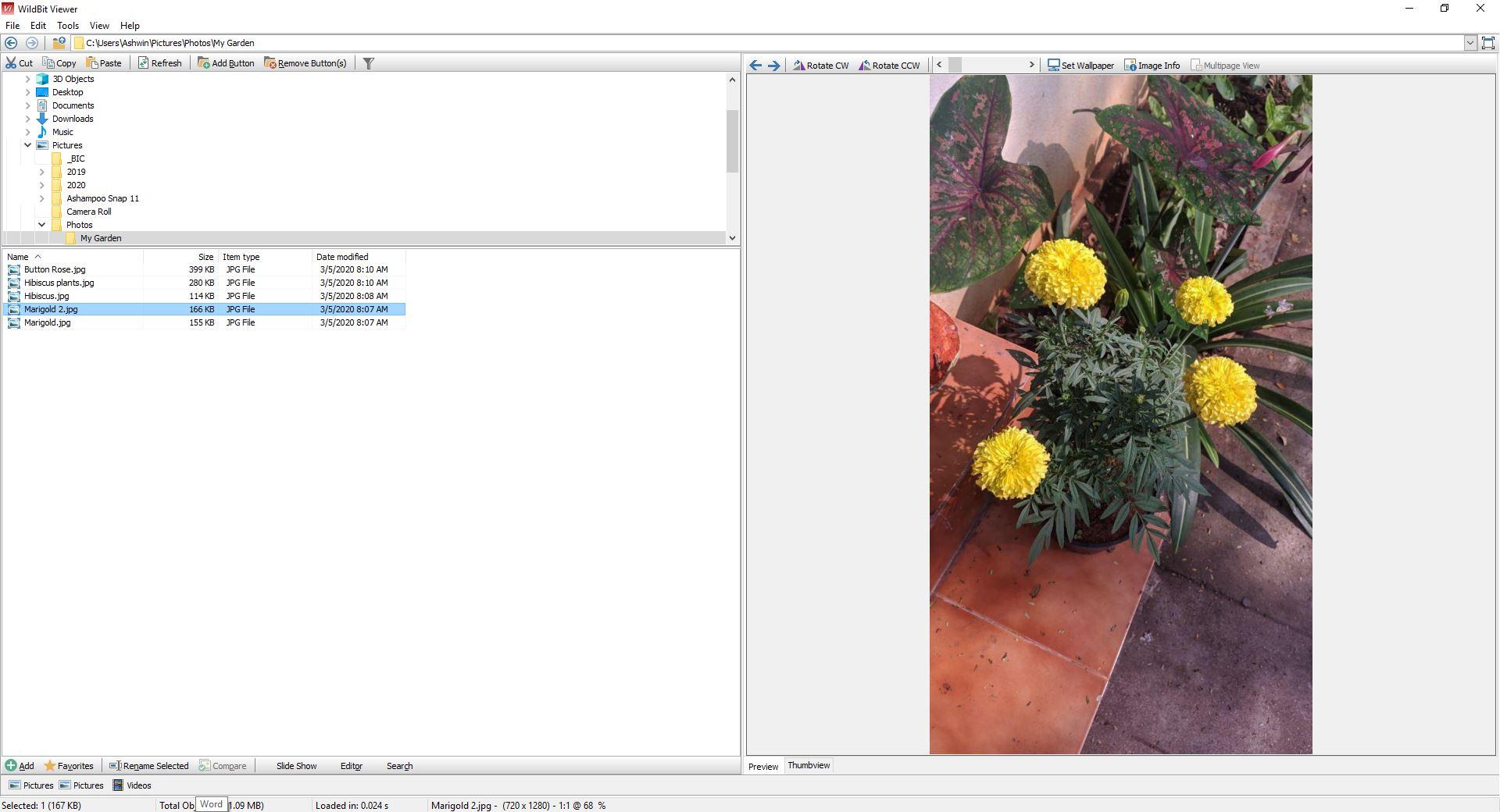 Vista previa de las herramientas de WildBit Viewer