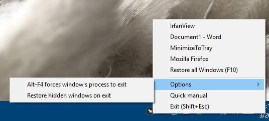 Opciones de MinimizeToTray