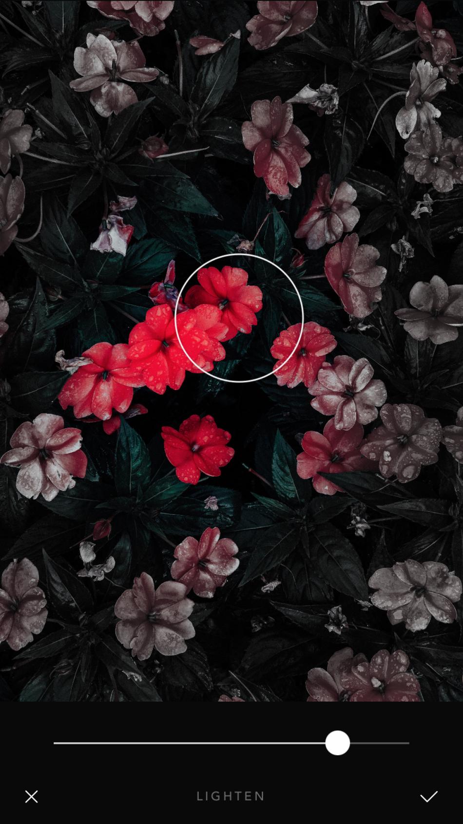 Las herramientas táctiles te permiten editar partes específicas de cada foto.