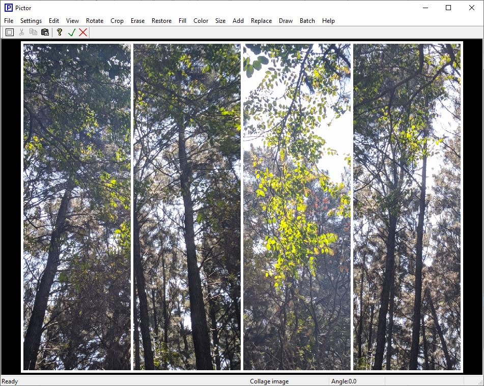 Ejemplo de collage de imágenes