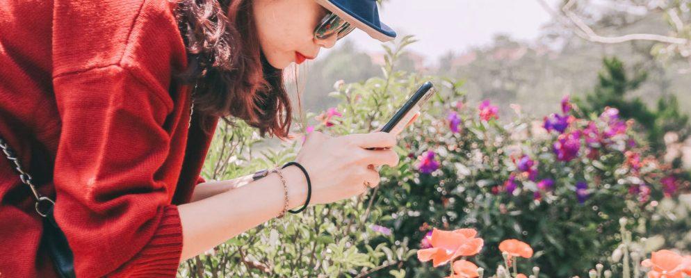 Los mejores juegos de jardinería para Android y iPhone