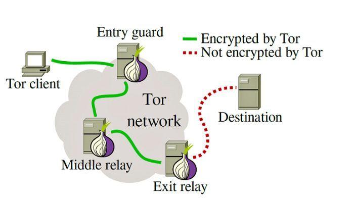Usos cotidianos de Tor 2: cómo funciona Tor