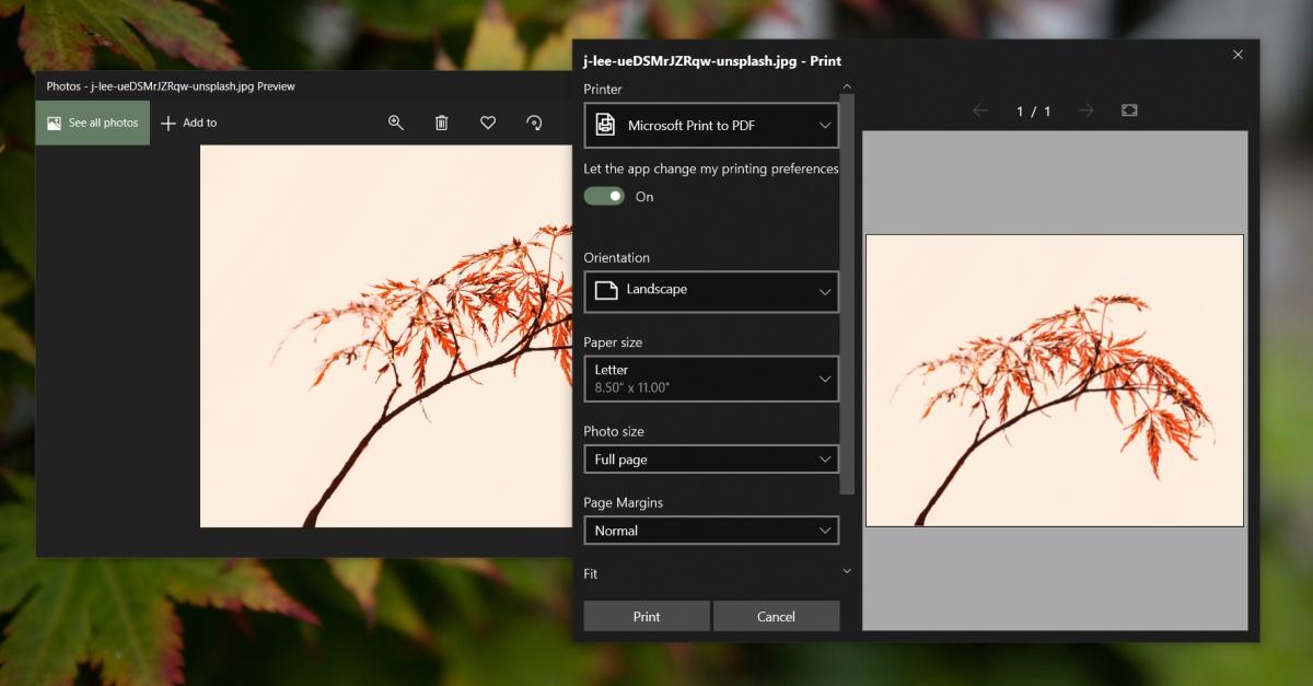 Microsoft Photos crashes when printing