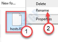 Hosts File Rename Final Main