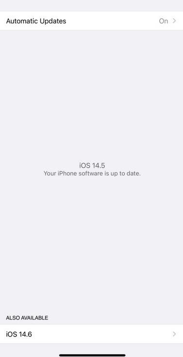 Según Apple, aquellos con una versión RC de la última compilación pueden decidir instalar la próxima versión beta o salir del programa beta: con iOS 14.5 a solo unos días, Apple lanza iOS 14.6 Developer Beta 1