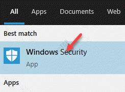 Resultado Seguridad de Windows