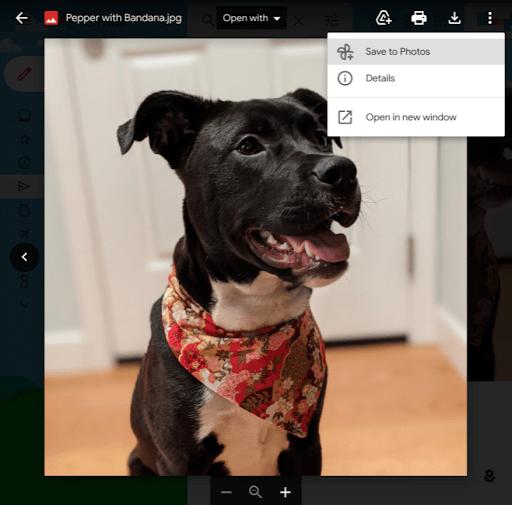 Guardar en Gmail en Google Fotos
